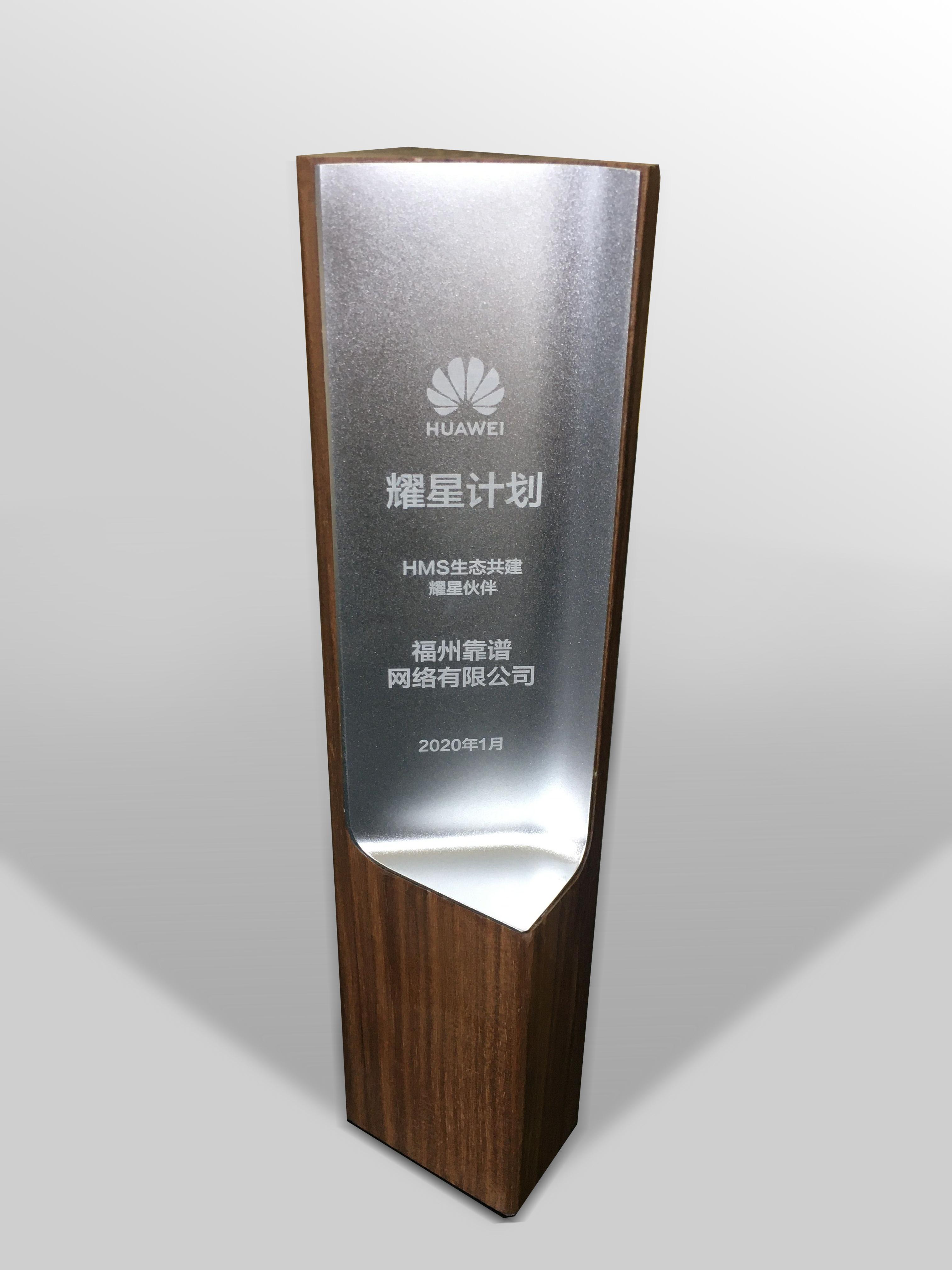 靠谱网络荣获华为年度最佳耀星伙伴奖